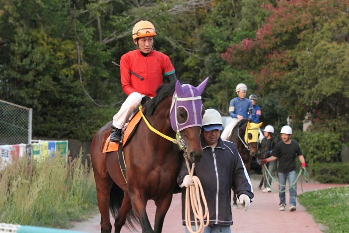 2011年4月23日(土) 高知競馬 7R にごう協賛 全国のお馬に感謝特別 C3-7_a0077663_633530.jpg