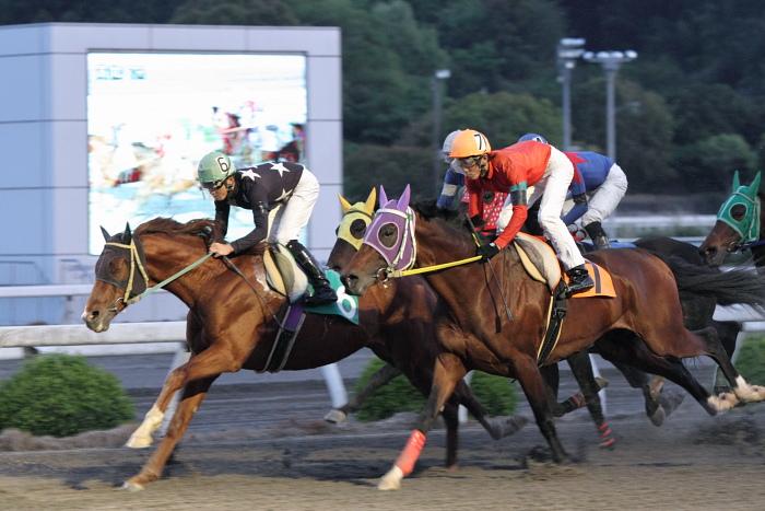 2011年4月23日(土) 高知競馬 7R にごう協賛 全国のお馬に感謝特別 C3-7_a0077663_6335913.jpg
