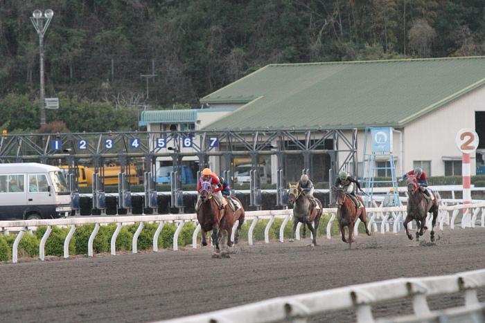 2011年4月23日(土) 高知競馬 7R にごう協賛 全国のお馬に感謝特別 C3-7_a0077663_6342883.jpg