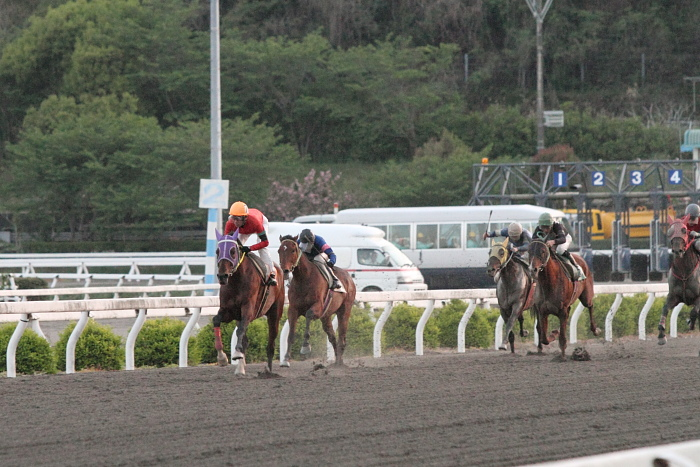 2011年4月23日(土) 高知競馬 7R にごう協賛 全国のお馬に感謝特別 C3-7_a0077663_6343870.jpg
