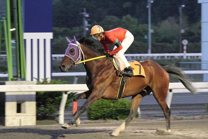 2011年4月23日(土) 高知競馬 7R にごう協賛 全国のお馬に感謝特別 C3-7_a0077663_6344924.jpg
