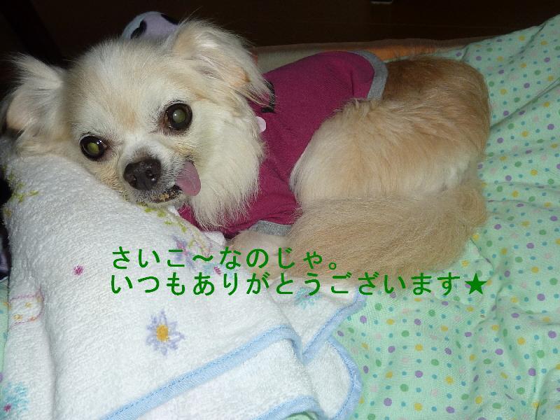 f0233763_1913831.jpg