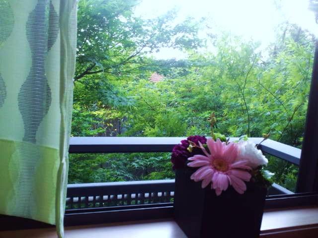 窓のそと_c0151965_17174740.jpg