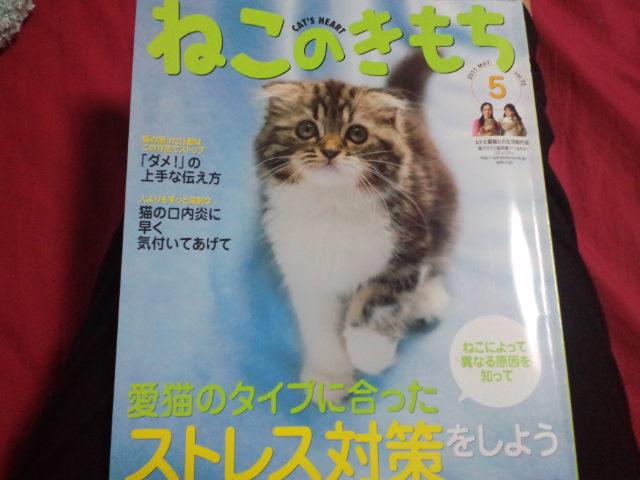 勉強_c0151965_1823039.jpg