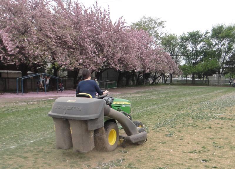 八重桜と芝刈り_f0059673_632453.jpg