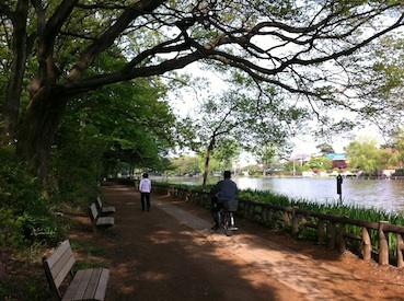 石神井公園_f0072976_7365989.jpg