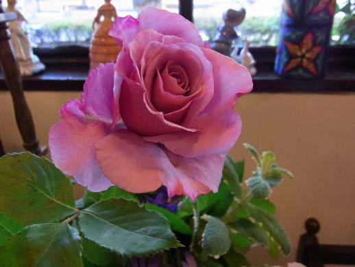 ベビーピンクの薔薇のブローチ_d0127182_17405483.jpg