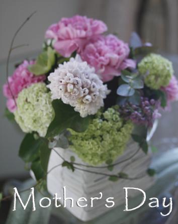 母の日ウィーク_b0208604_5365066.jpg