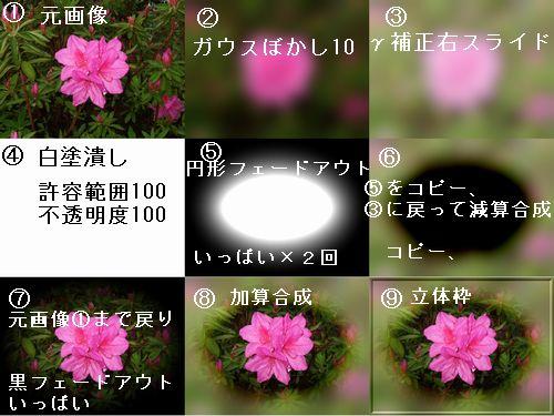 d0048312_21201822.jpg