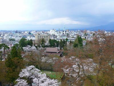 桜満開の鶴ヶ城_f0032130_1740222.jpg