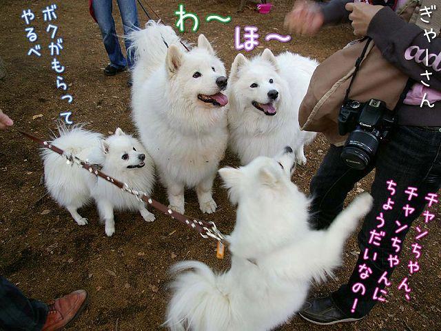 おっきな公園ウマウマ編_c0062832_5412486.jpg