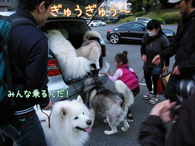 おっきな公園ウマウマ編_c0062832_5415892.jpg