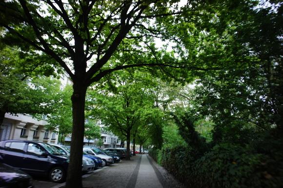 ベルリンは春爛漫。_c0180686_1572788.jpg