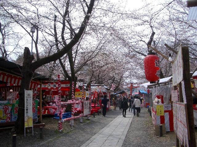 京都花見旅行5_a0047004_1413560.jpg