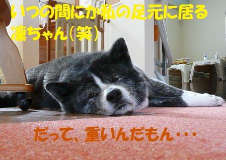 f0121712_9162237.jpg