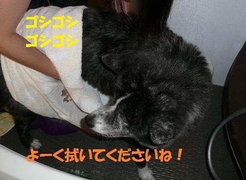 f0121712_9183573.jpg