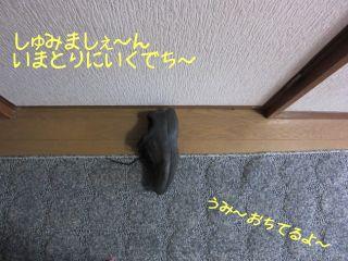 b0008217_13575687.jpg