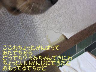 b0008217_140272.jpg