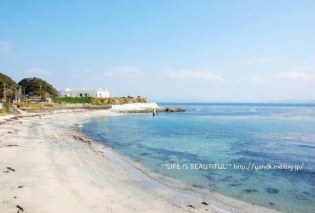 春の浜辺_d0083623_20535142.jpg
