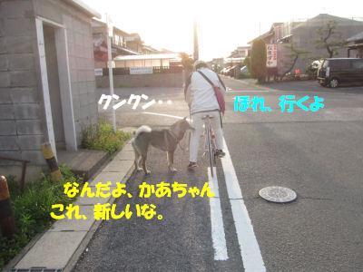 f0143123_1954375.jpg