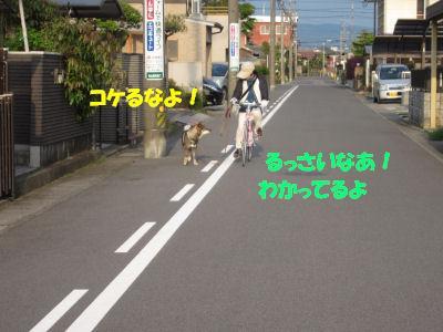 f0143123_2004554.jpg