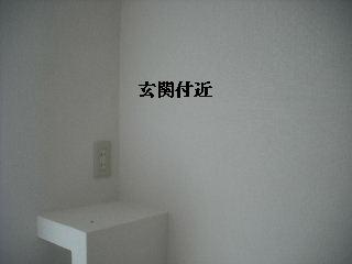 f0031037_2121059.jpg