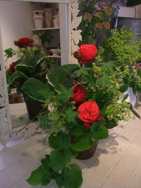 オークリーフ花の教室(季節のバラを使って・・・)_f0049672_1855366.jpg