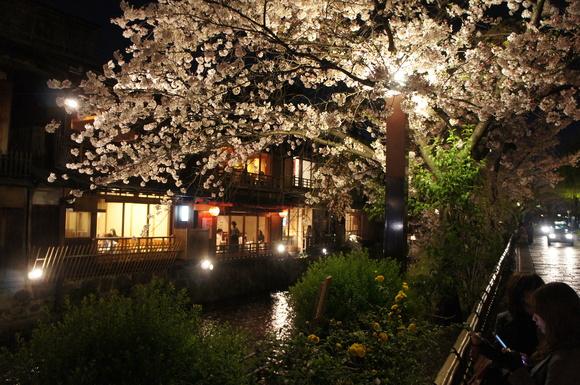 津和野ー>京都_c0180686_21382596.jpg