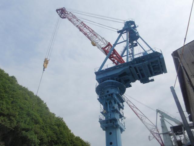 造船マンたちの栽培日記_b0201492_9314165.jpg