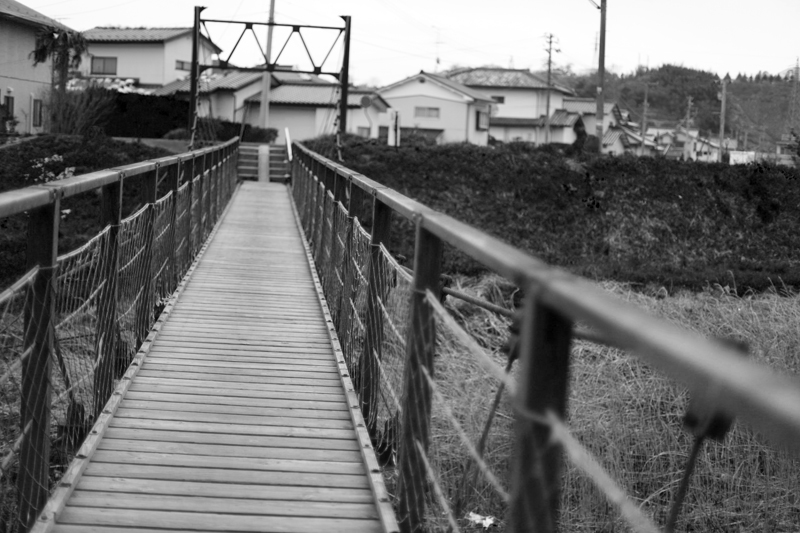 好間川のお散歩~_f0217594_13155761.jpg