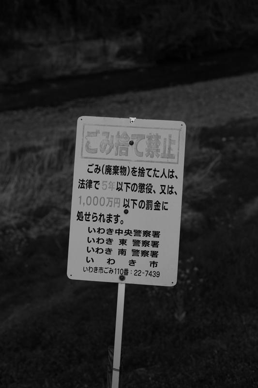 好間川のお散歩~_f0217594_13181067.jpg