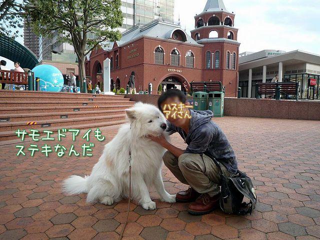 おっきな広場おば散歩_c0062832_5263718.jpg