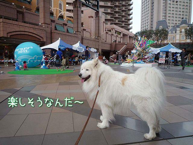 おっきな広場おば散歩_c0062832_5271046.jpg