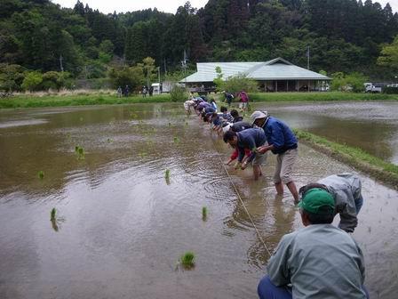 行事「米作り1・田植え体験をしよう」を行いました_a0123836_17144136.jpg