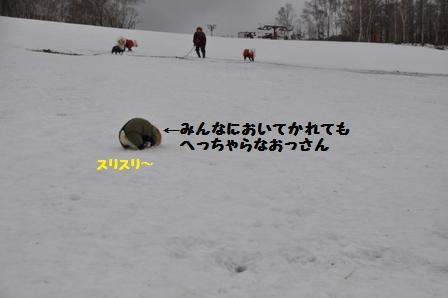 f0212597_233435.jpg