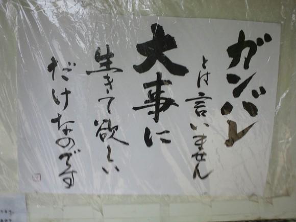f0220058_2343381.jpg