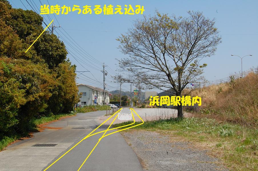 b0059978_20595925.jpg