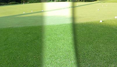 ゴルフ用アイギア・SWANS GW-3701再入荷!_c0003493_10305229.jpg