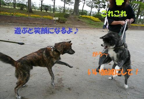 f0121712_2315457.jpg