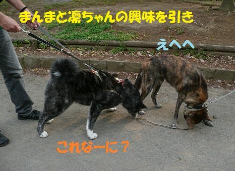 f0121712_23161396.jpg