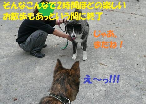 f0121712_23304264.jpg