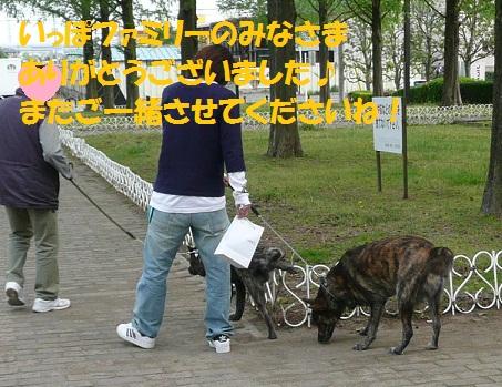 f0121712_2331181.jpg