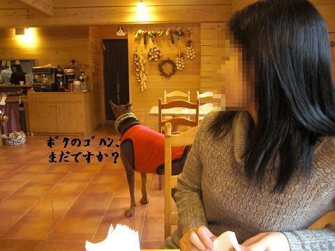 f0129731_2224044.jpg