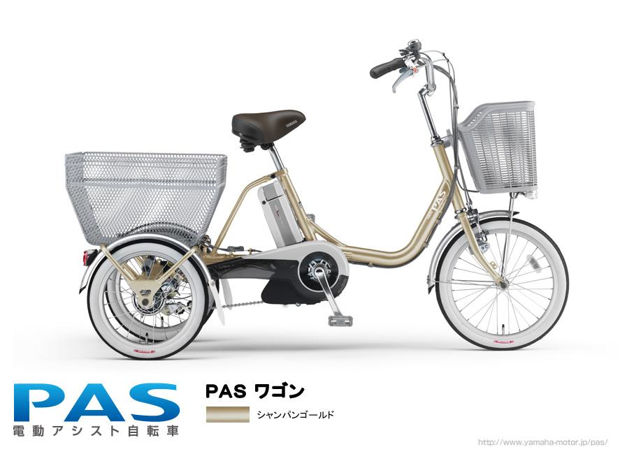 PAS New Model _e0165756_15323665.jpg