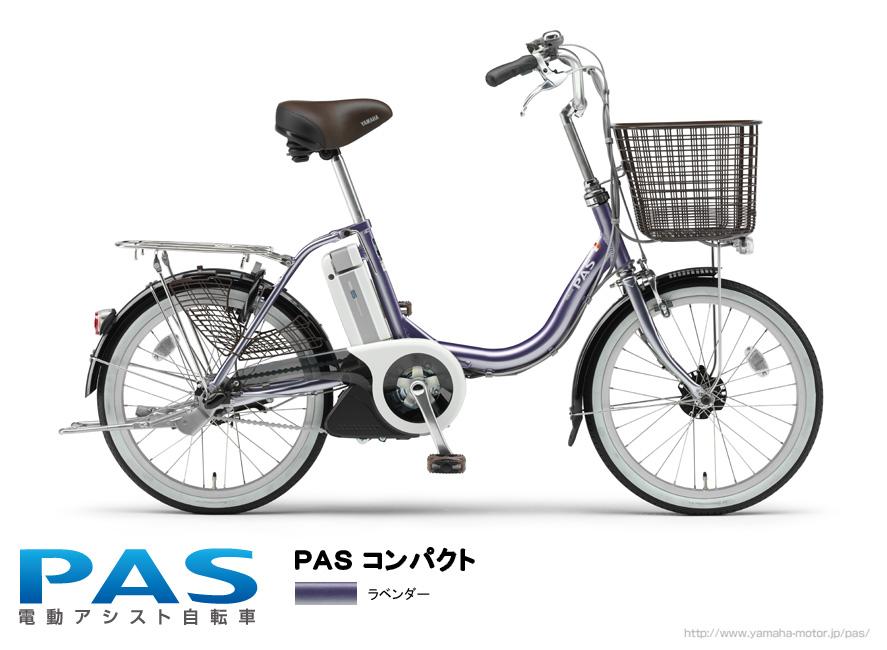 PAS New Model _e0165756_15362278.jpg