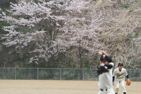 桜の木の下で_b0219267_2341894.jpg