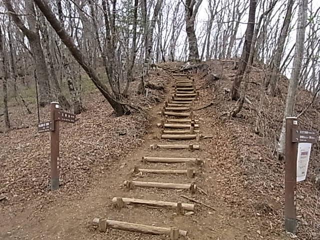 2011.5.3 三頭山から笹尾根を下る 日帰り_b0219778_1959636.jpg
