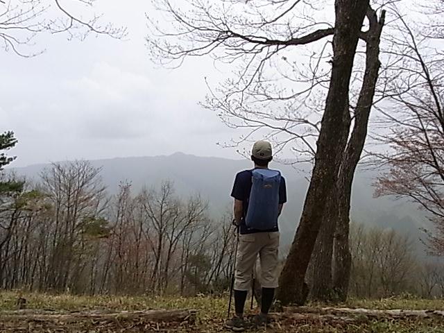2011.5.3 三頭山から笹尾根を下る 日帰り_b0219778_20184.jpg