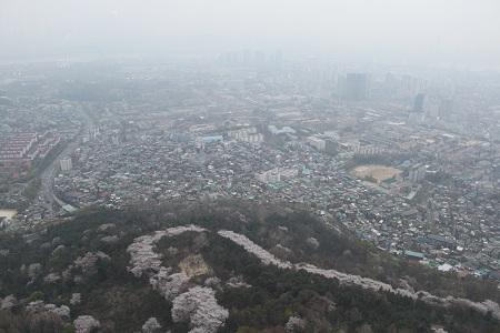 韓国旅行2011.4:サムギョプサルとNソウルタワー_b0189489_107717.jpg