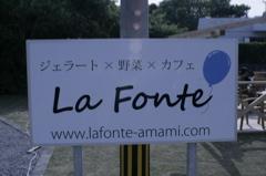 奄美大島への旅_e0220493_5424538.jpg